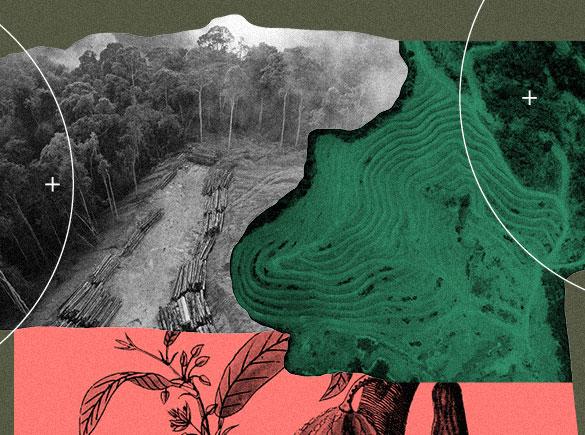 Indústria Amazônia 4.0